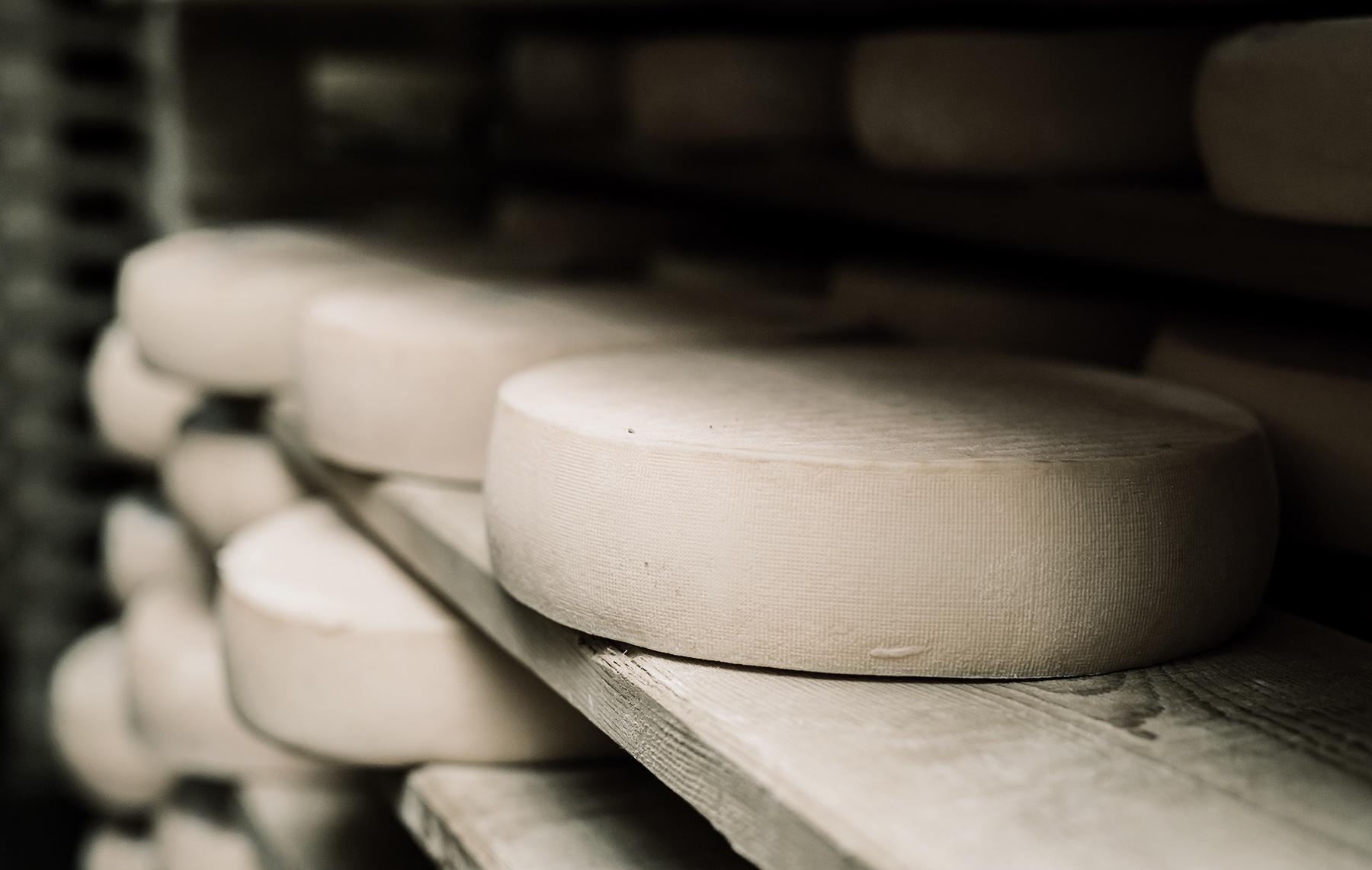 Cheese reel